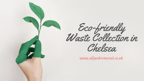 Eco-friendly Waste Collection in chelsea