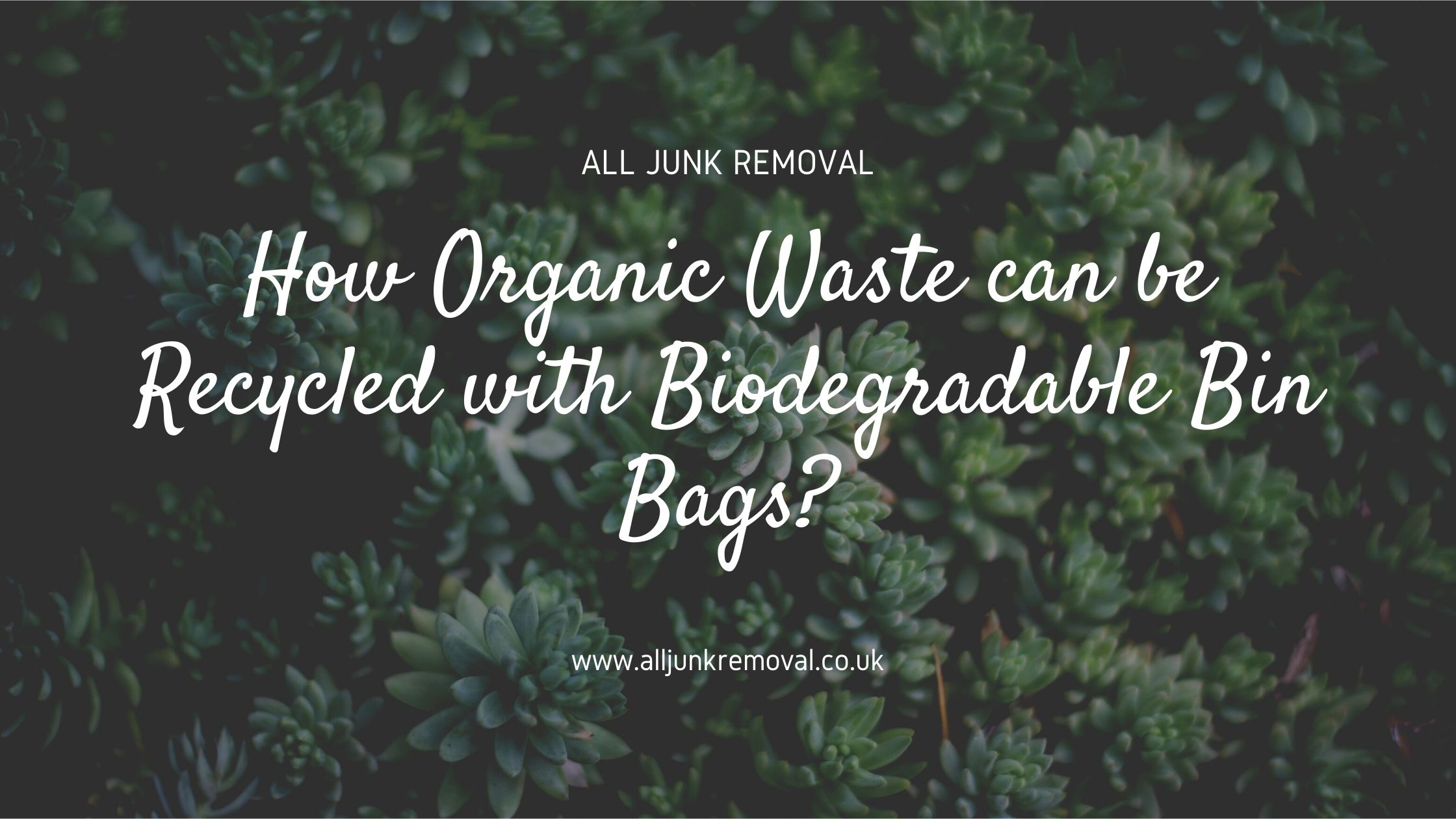 Waste Recycle with Biodegradable Bin Bags